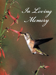 http://img01.funeralnet.com/obit_photo.php?id=1663808&clientid=casefuneralhome