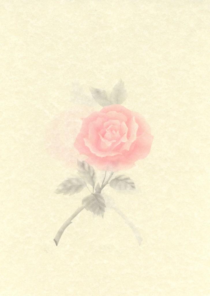 Darlene Rose  Piazza