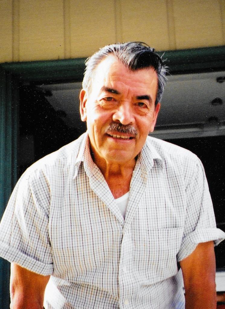 Elias Licea Bulnes